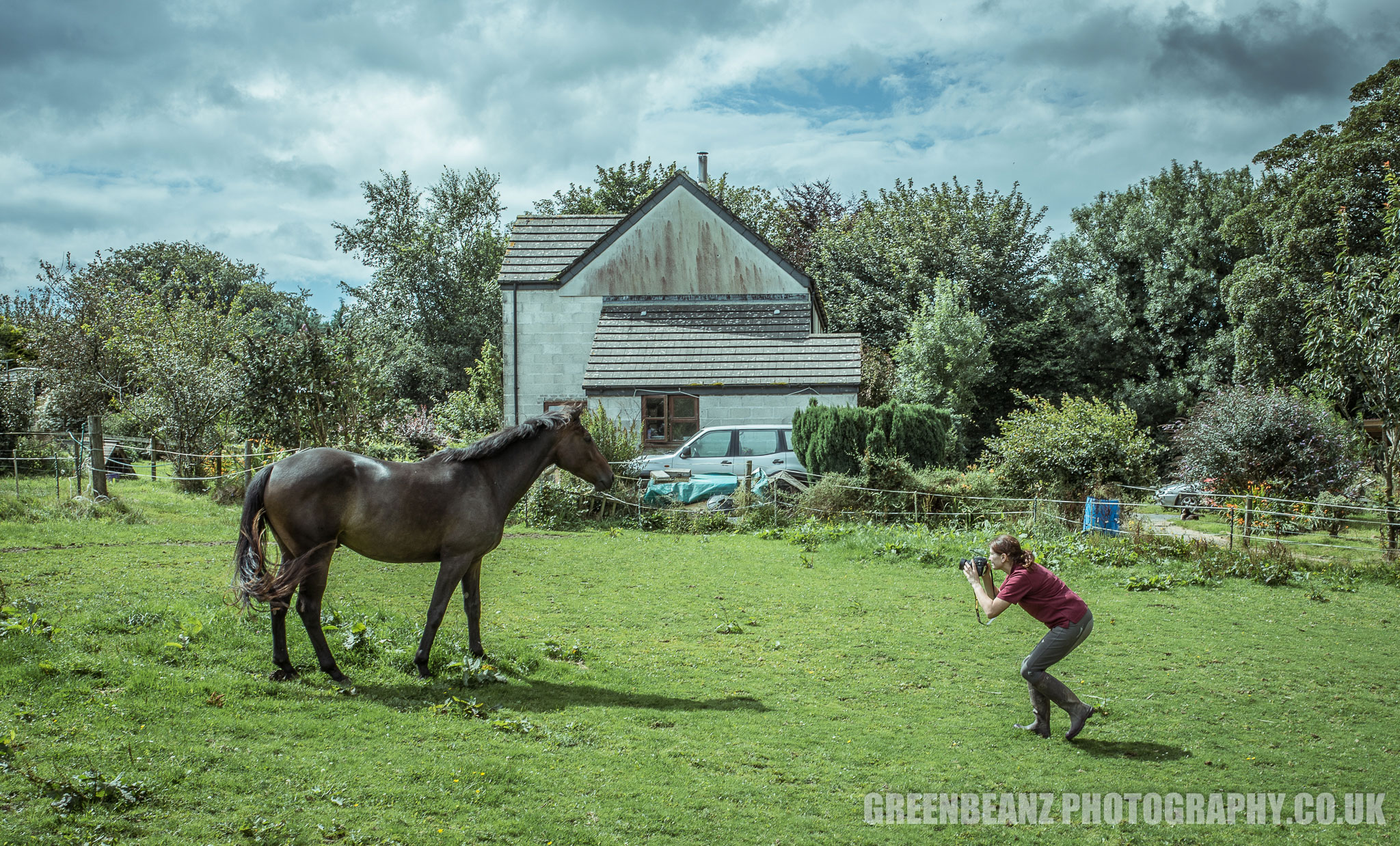 Outstanding Horsewoman Photographs Her Horse in Cornwall